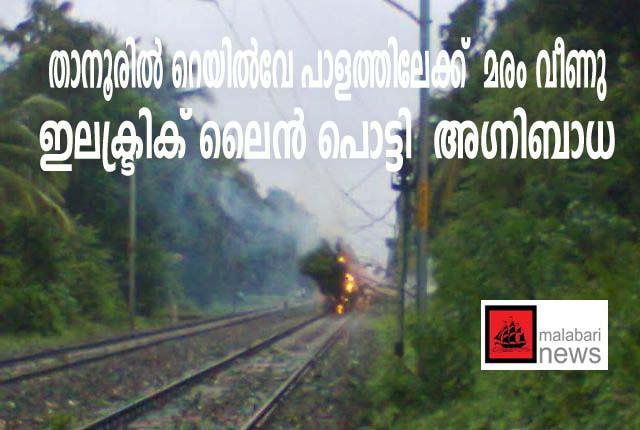 tanur train copy