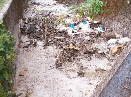 latrine waste