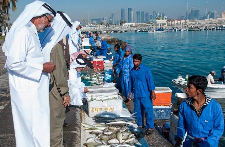 Qatar fish