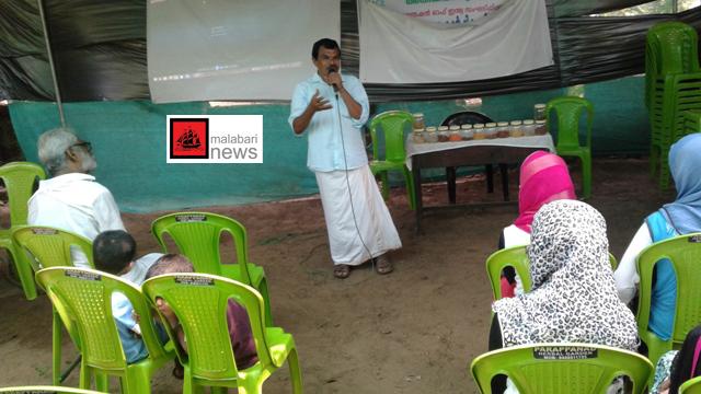 parappanangadi class copy