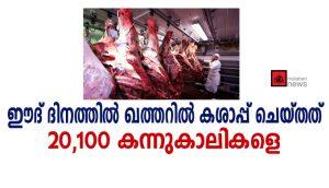 ഈദ് ദിനത്തില് ഖത്തറില് കശാപ്പ് ചെയ്തത് 20,100 കന്നുകാലികളെ